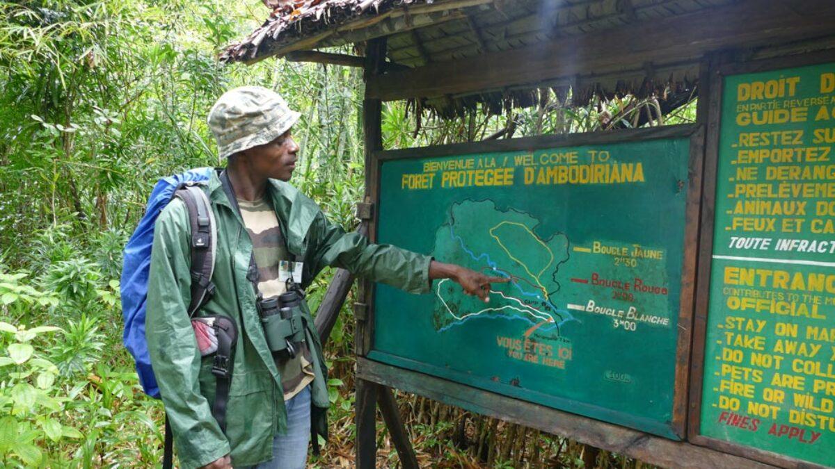 L'ADAFAM consolide la protection foncière de la forêt d'Ambodiriana