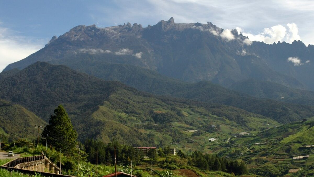 Etape 4 : le Parc national du Kinabalu