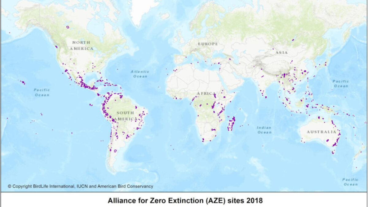 Où sont les sites de la dernière chance pour les espèces en danger d'extinction ?