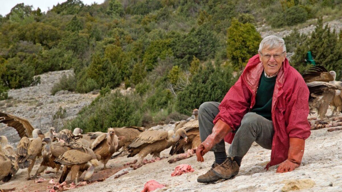 Rencontre avec Michel Terrasse, fidèle protecteur des rapaces dans le monde