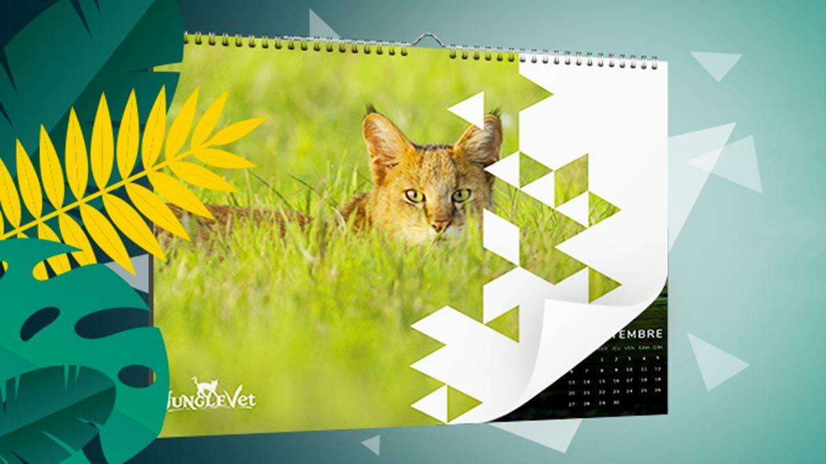 En 2021, donnons du temps à la nature ! Commandez notre calendrier 2021 en faveur des animaux sauvages.