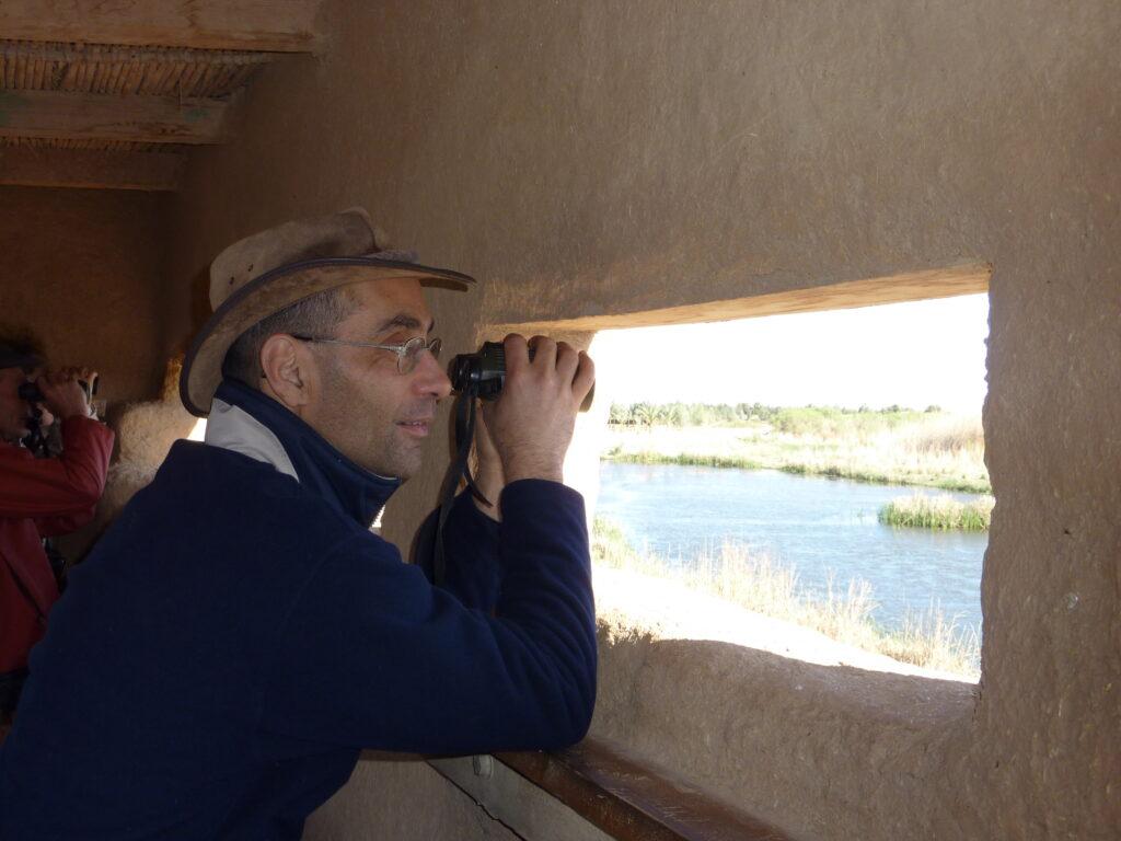 Alain Moussu - observation des oiseaux